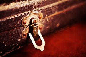 Trumpet-Case